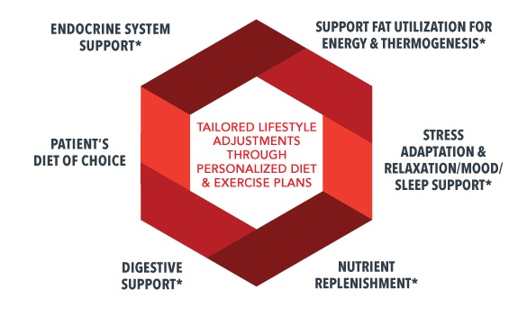 weight management diagram